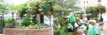 南公園花壇